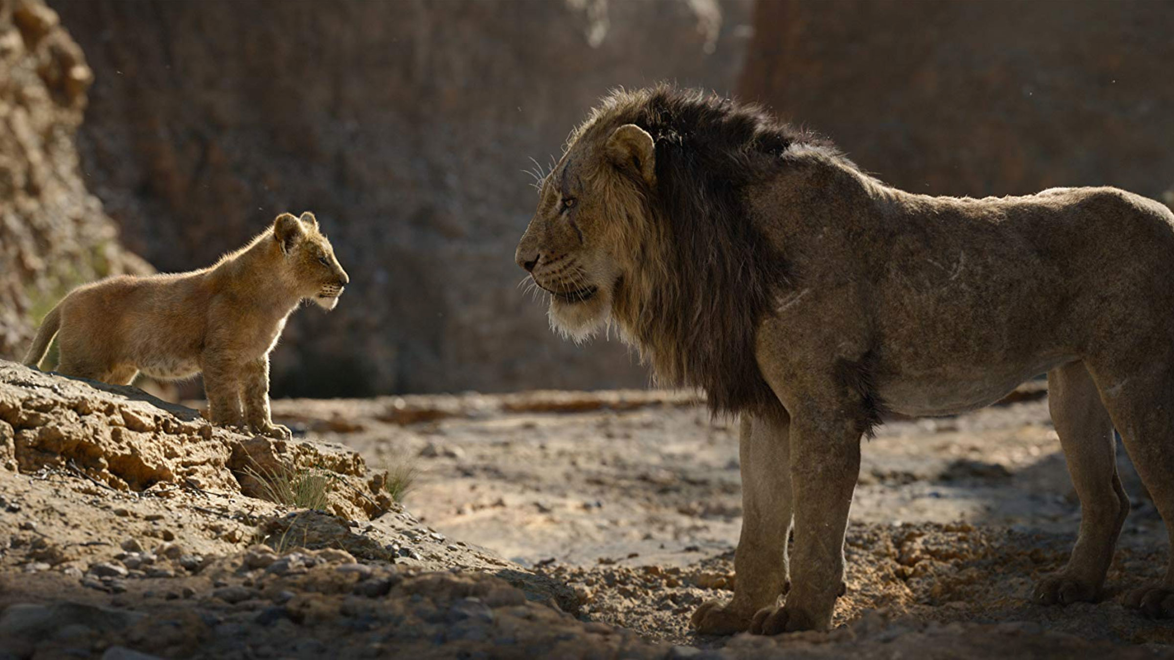 The Lion King (Ultra HD 4K Blu-ray)